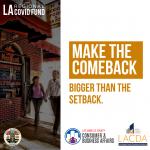 Make the comeback bigger than the setback. LA Regional Covid Fund